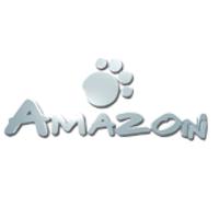 Amazon VW